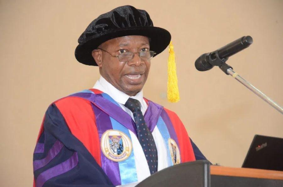 Nigeria, Professor Oluayo Bello-Olusojirias-economy-futa-don/