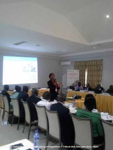stakeholders-workshop-consultation-legon3