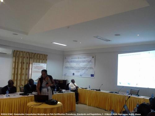 stakeholders-workshop-consultation-legon90