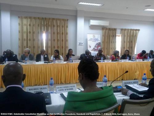 stakeholders-workshop-consultation-legon95