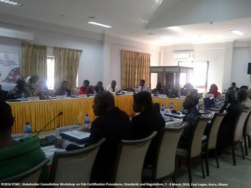 stakeholders-workshop-consultation-legon96